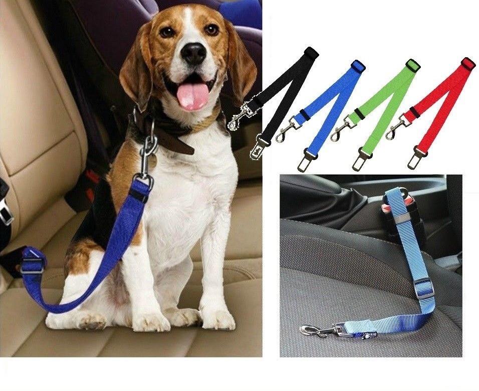 Pet Safety Seat Belt